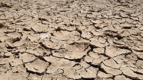 A South African stock video of dry drought cracked soil desert ground earth clay and dust with natural texture