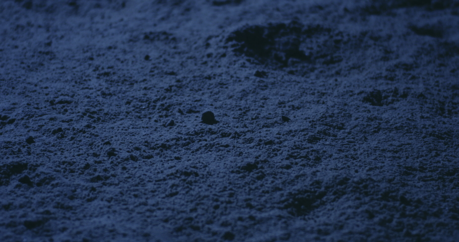 Close-up of astronauts walking on the Moons surface Royalty-Free Stock Footage #1041809977