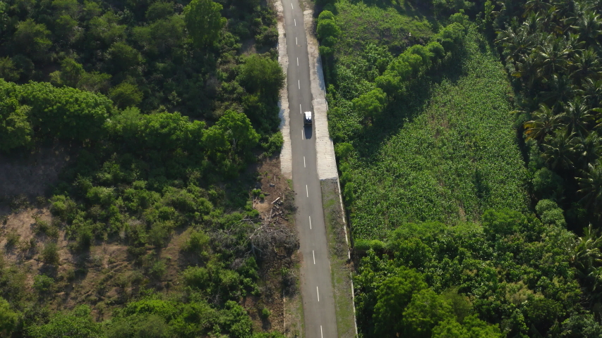 Aerial bird's eye view of car with surfer boards on the roof rides through a forest of coconut trees. Drone aerial shoot. Weekend road trip. Extreme surfer camp in a tropical country. City hippie. #1042045954