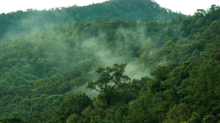 Video of mountain nature landscape  | Shutterstock HD Video #1042146163