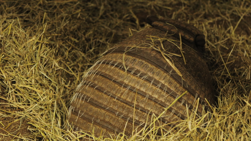 An armadillo diggig a hole on the recint full of grass and straw.