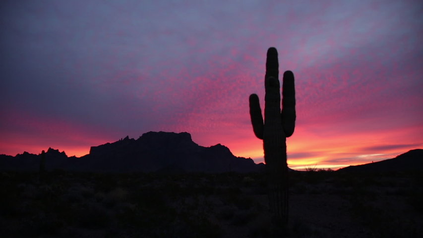 Real time static shot of a saguaro cactus and distant mountains silhouetted by colorful pink, purple and yellow dawn clouds in the Sonoran desert in Arizona #1042527088
