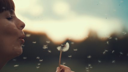 Portrait of a beautiful young woman blowing on the ripened dandelion in the evening against the background of the sunset sun. 4K slow motion video.