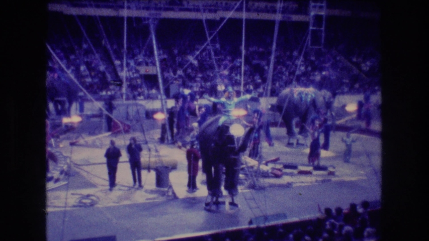 BOSTON USA-1974: Elephants In A Circus Environment | Shutterstock HD Video #1042735543