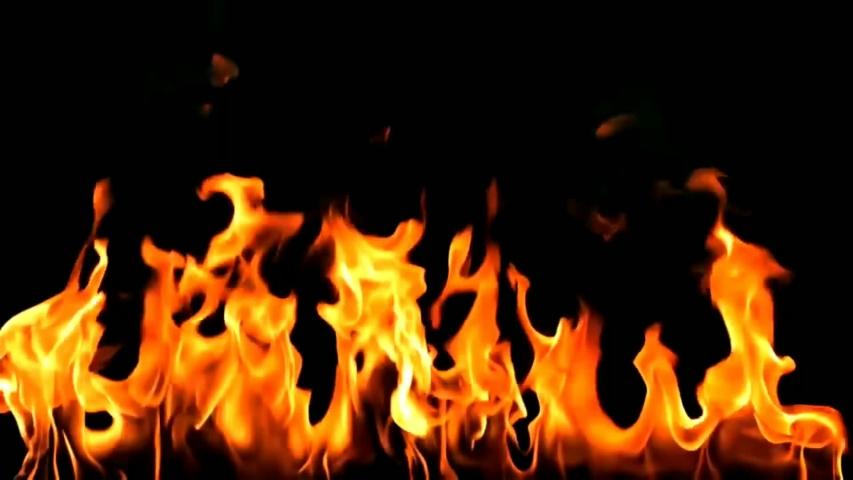 Burning fire. Bonfire. Closeup of flames burning on black background premium | Shutterstock HD Video #1042847119