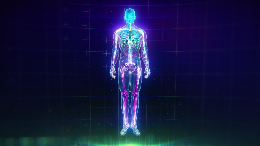 Colorful Human Body animation with flares and particles showing veins, bones, organs and skin. Plexus. Futuristic and Artistic concept of human anatomy. Full Body Circulatory System. 4K UHD Royalty-Free Stock Footage #1043165482