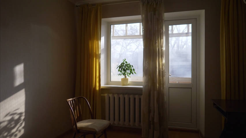 Sunlit room with big window and chair, sofa, potted plant, early morning in cozy interior, slow motion