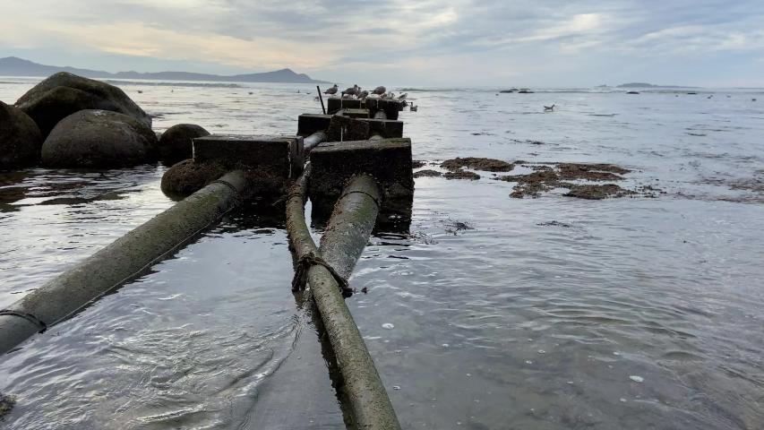 A fish factory throws waste into the water. Waste pipe. Playa Tres Emes. Tres Emes beach. Ensenada, Baja California. Mexico.