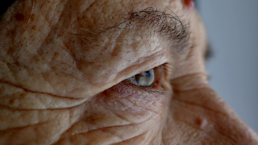 The face and eyes of an old man. Large wrinkles on the face of an old woman. Face close up. A senior citizen looks into the distance.
