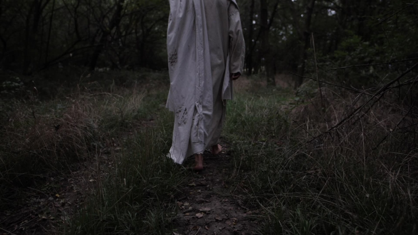 A man wearing a robed walks in slow motion through a bunch of trees. Could be a wizard.   Shutterstock HD Video #1043831626