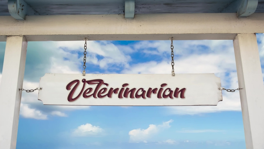 Street Sign the Way to Veterinarian | Shutterstock HD Video #1044072064