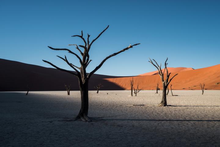 4K-25FPS-10BIT-YUV422 Namibia Sossusvlei Desert Dead Vlei dunes sunrise,red desert