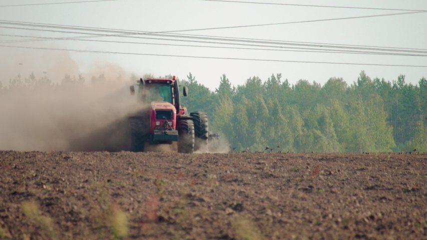Front view of a farmer on a red tractor plowing the dusty arid soil. The farm car is followed by hungry birds. Agribusiness in the spring