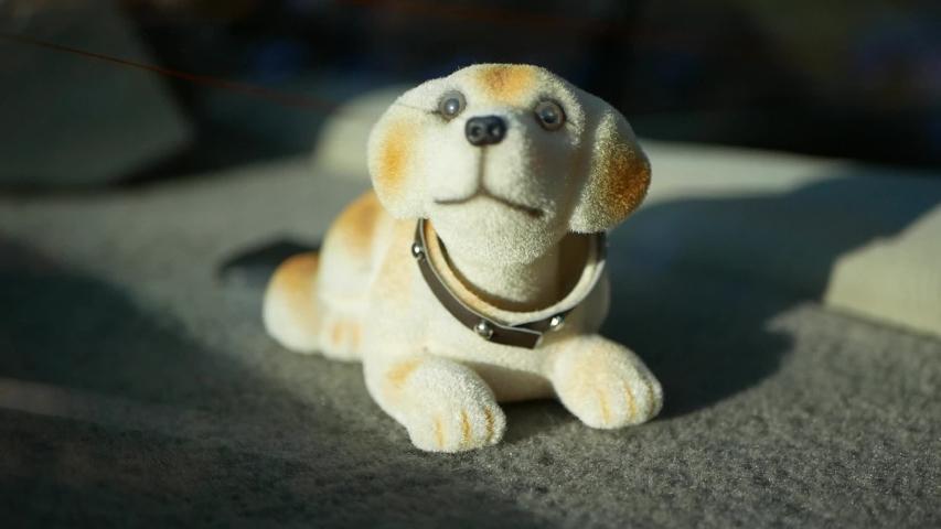 Nodding dog on dashboard with car shaking head