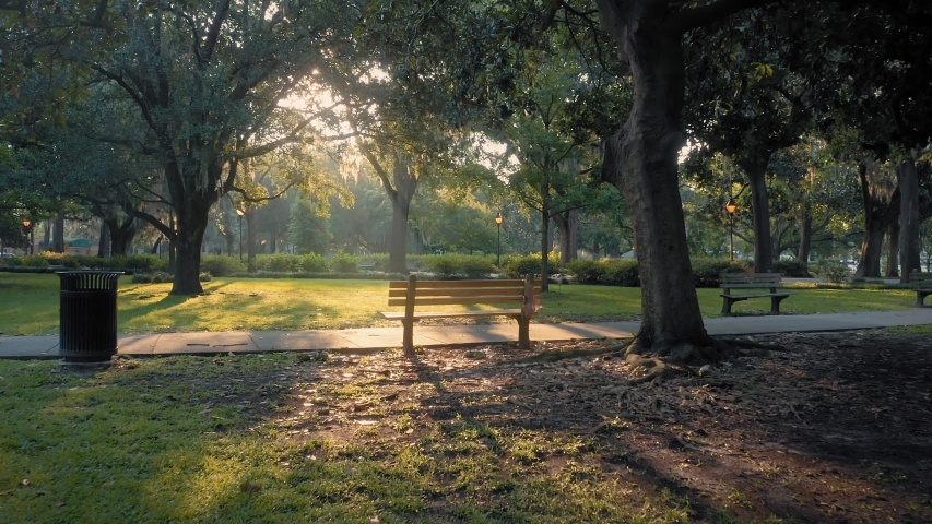 Aerial: Park bench and ray of light. Forsyth Park. Savannah, Georgia, USA.