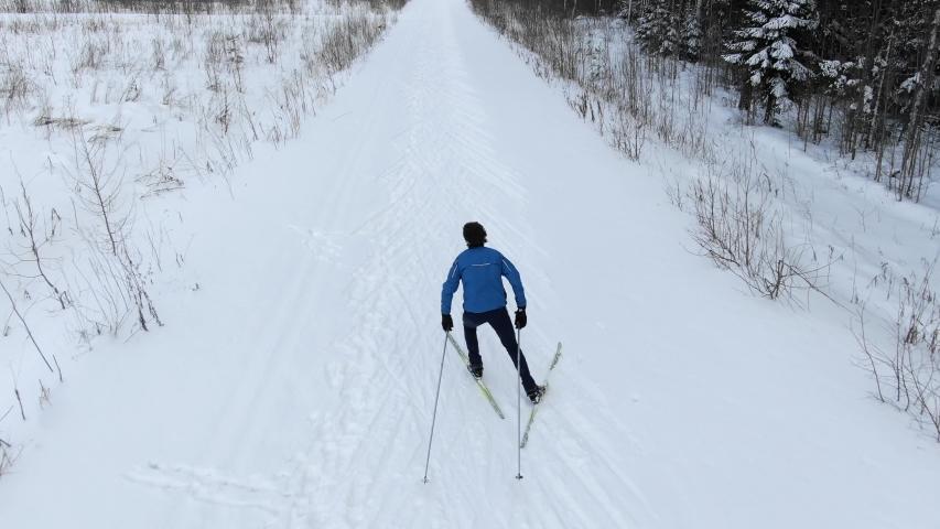 Professional athlete does cross country skiing along snowy track among bare trees by evergreen forest aerial backside view