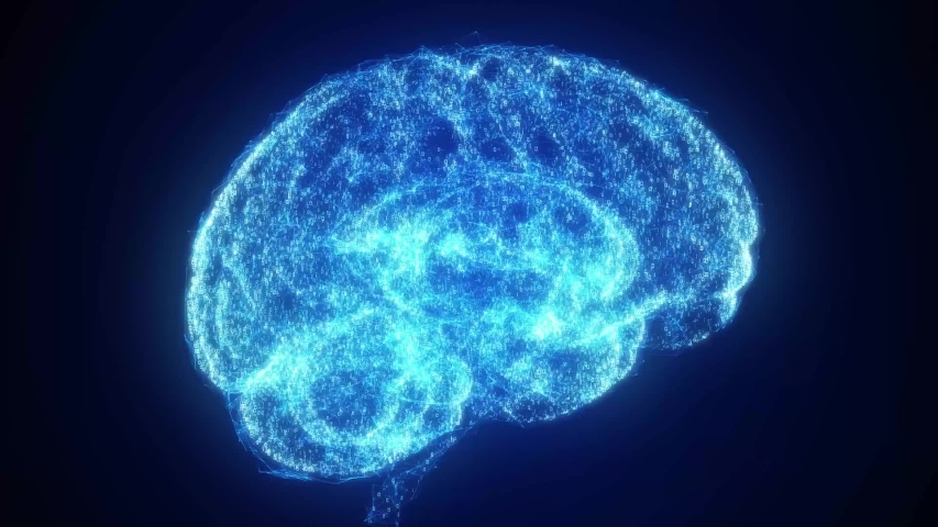 Digital artificial intelligence brain forms and grows in particle cloud of binary data in futuristic cyberspace neural network deep learning technology concept 3d animation alpha matte included   Shutterstock HD Video #1044807091