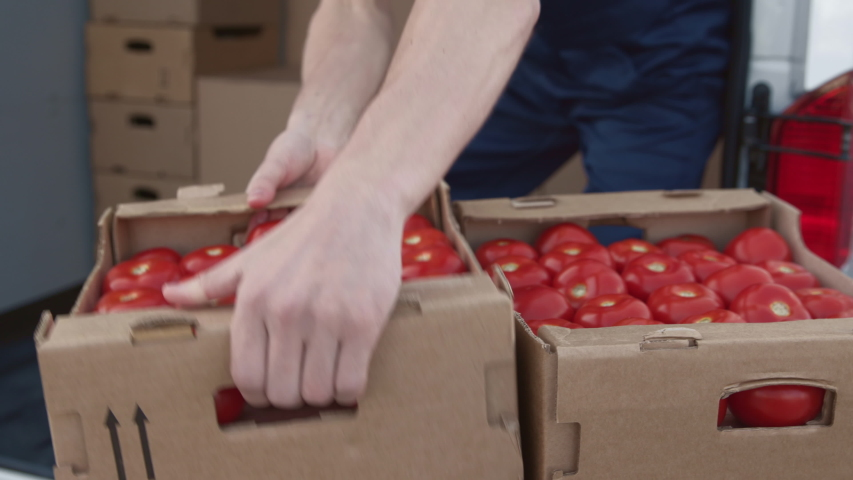 Transportation of Food on Truck. Shipment Order of Foodstuff from Production Plant for Selling. Worker Carrying and Piling Boxes of Tomato for Provider. Concept of Transfer Company or Carriage on Van | Shutterstock HD Video #1044847207