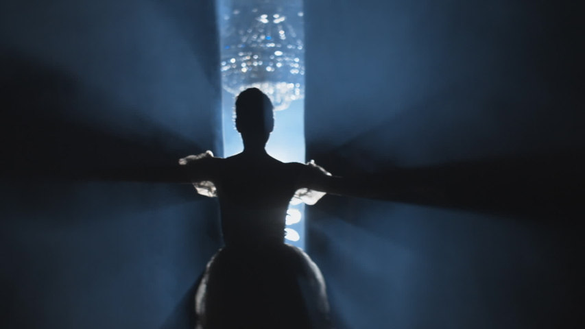 Ballerina enters the stage. Beginning of performance or show, curtain opening. Ballet dancer jumping, spotlight shines, audience applauding, smoke clears. Anamorphic lens