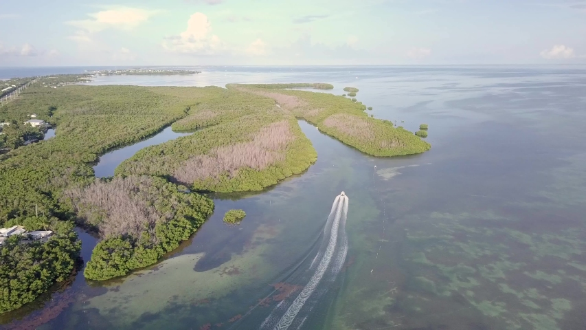 Aerial View of a Boat Going into a Florida Key Wetland