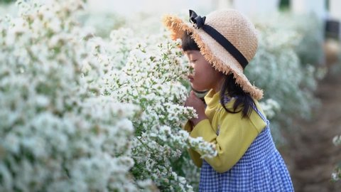 Asian cute child girl is smelling the white beautiful natural flower with happiness in the cutter flower garden.