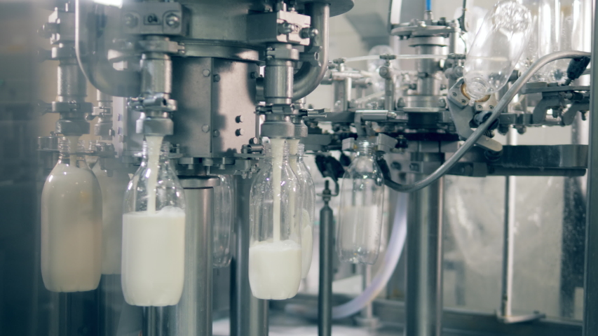 Rotating transporter is pouring fresh milk into bottles. Automated process of filling bottles with milk. Royalty-Free Stock Footage #1045107937