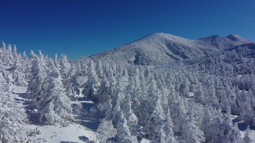 Aerial view of winter snow covered mountain peaks and frozen trees, winter footage, Mt. Hakkoda, Aomori, Japan. | Shutterstock HD Video #1045112413