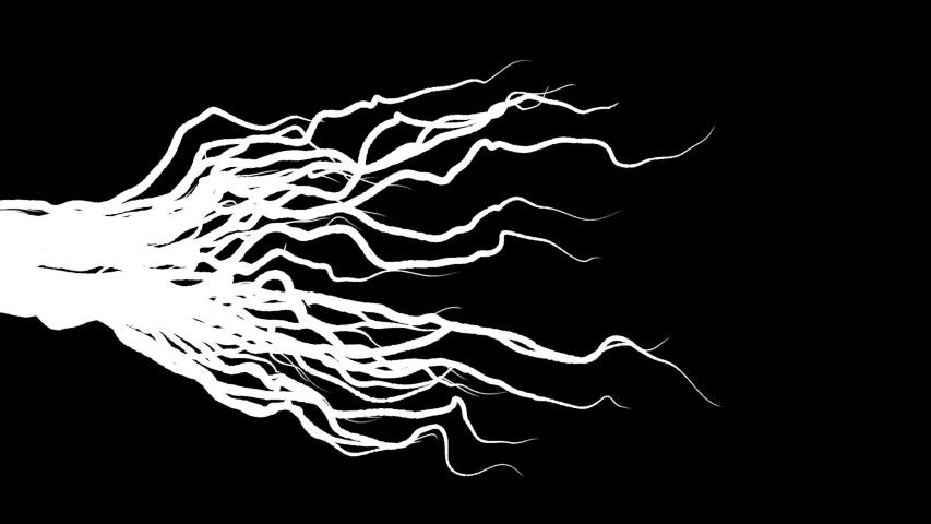 Animation of growing roots on black background. Animation. Slowly growing roots from left to right on black background. Moving lines like growing roots or progressive disease | Shutterstock HD Video #1045118380