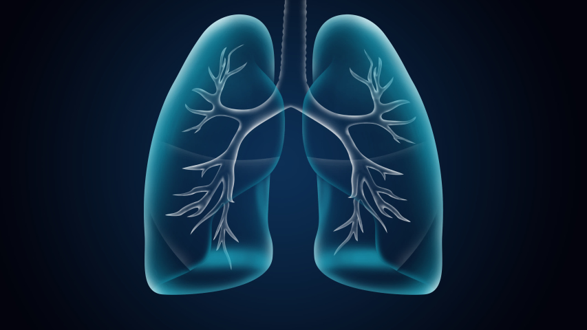 Human lungs are affected by pneumonia coronavirus.X-ray 3DAnimation