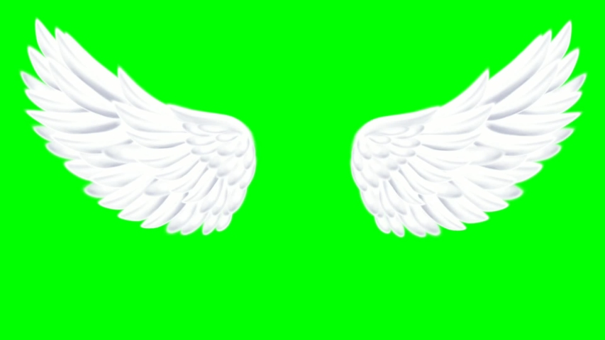 Flapping wings, loops, fairy wings, angel wings, with a green screen   Shutterstock HD Video #1045368049