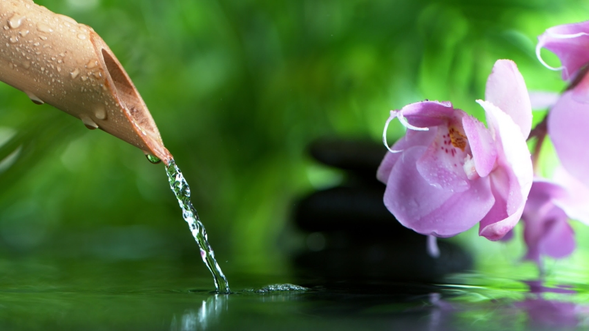 Super slow motion of leaking water stream from bamboo, spa and wellness concept. Filmed on very high speed cinema camera, 1000 fps. Royalty-Free Stock Footage #1045396927