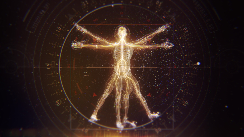 3D Futuristic Animation of Leonardo Da Vinci Vitruvian Man. Anatomy of a Perfect Human Male Body Showing Skeleton, Brain and Energy Flow with Data and Infographics. Royalty-Free Stock Footage #1045450147