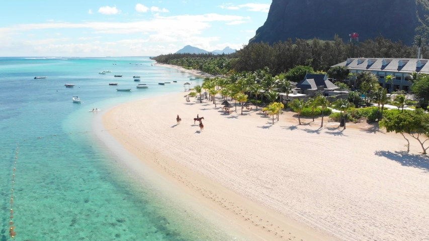 Tropical beach in Mauritius. Sandy beach with palms and blue transparent ocean. Aerial view   Shutterstock HD Video #1045458226
