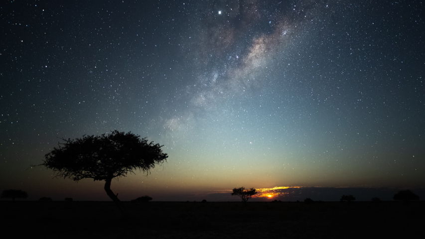 Astro timelapse of an Acacia tree silhouetted against the African night sky with the Milky Way rising in the Southern Hemisphere followed by moon rising over a wide barren/arid landscape.