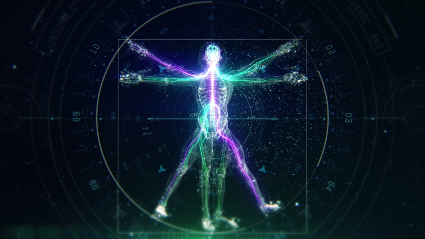3D Futuristic Animation of Leonardo Da Vinci Vitruvian Man. Anatomy of a Perfect Human Male Body Showing Skeleton, Brain and Energy Flow with Data and Infographics. Royalty-Free Stock Footage #1045547083