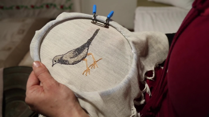 Embroidery Art, embroidery motifs, bird designs, handcraft done by experienced woman needle work, Old vintage art, traditional embroidery | Shutterstock HD Video #1046050618