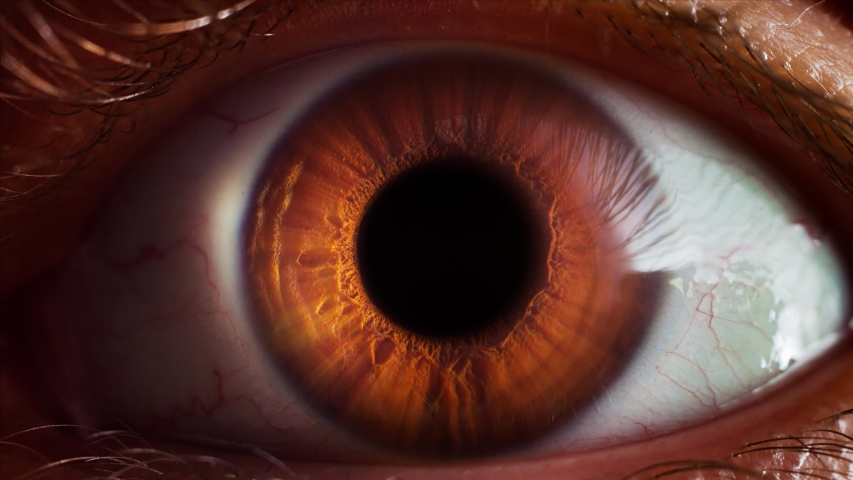 Human eye iris opening pupil extreme close up slow motion 60fps 4k | Shutterstock HD Video #1046146867