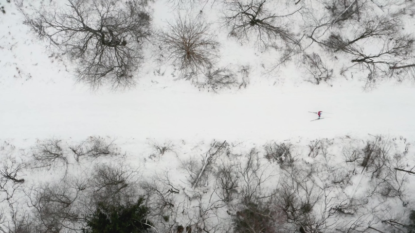 Aerial view of a professional athlete cross country skiing. Aerial top down view, cross country skiing in winter forest