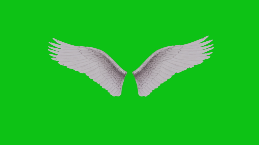 Fluffy white 3D animated angel wings with fairy tale beautiful feathers flapping on a green screen background