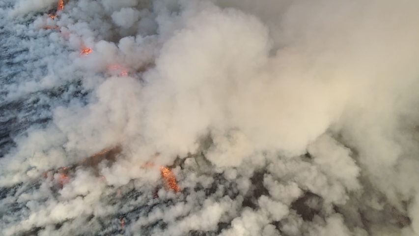 Aerial view of big smoke clouds and fire on the field. Flying over wildfire and plumes of smoke. Natural disaster due to extreme heat and climate change. 4K, UHD | Shutterstock HD Video #1046309536