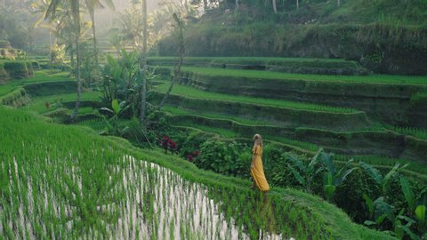 travel woman in rice paddy wearing yellow dress walking in rice terrace exploring cultural landscape on exotic vacation through bali indonesia discover asia