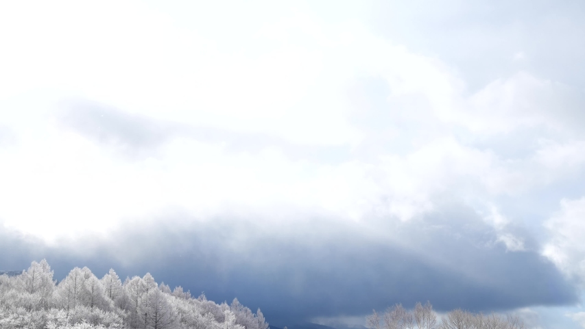 Rime Kita-Yatsugatake Yatsugatake Chushin Kogen Quasi-National Park Nagano / Japan | Shutterstock HD Video #1047049813