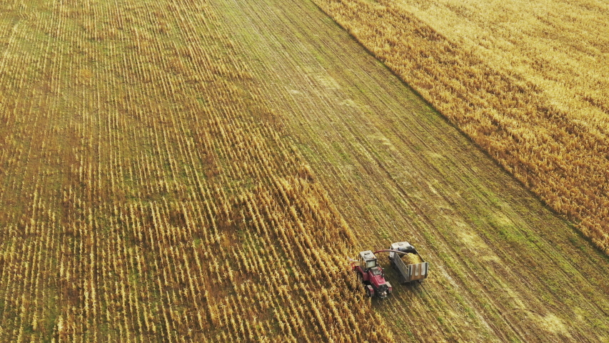 Aerial View Of Rural Landscape. Combine Harvester And Tractor Working In Corn Field. Collects Dry Corn Plants. Harvesting Of Maize In Late Summer. Agricultural Machine Collecting Plants In Cornfield | Shutterstock HD Video #1047106120