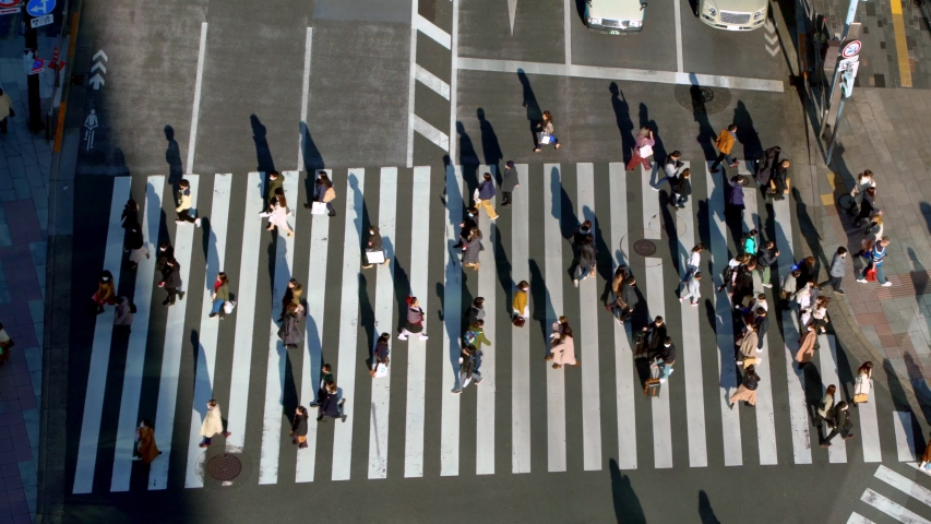 Tokyo, Japan-02 February, 2020: 4K, Elevated view over a crowd pedestrian crossing in road intersection with light of a sunset. Asia downtown at day. Metropolitan City-Dan | Shutterstock HD Video #1047142000