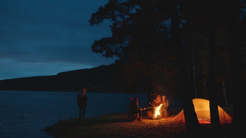 Group of friends sitting by campfire roasting marshmallows camping in forest by lake an night chatting sharing warmth enjoying outdoor adventure 4k