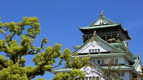 4K, Main tower of Osaka Japanese Castle behind rock wall, famous landmarks in Japan. Beautiful scene of the old heritage building Japanese.
