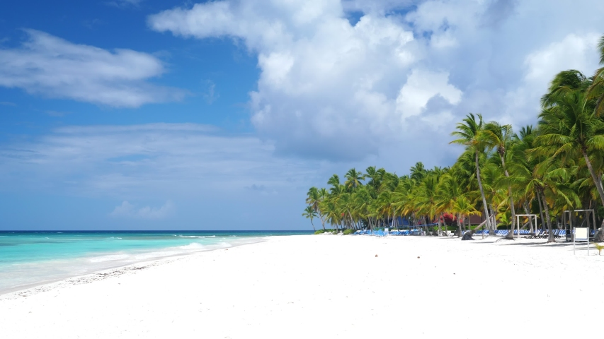 Coconut palm tree on white sandy seashore on caribbean island. Travel destinations. Summer vacations   Shutterstock HD Video #1047466447