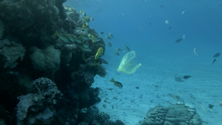 Slow motion, discarded old yellow plastic bag slowly swims with school of yellow fish near a coral reef in blue water. Plastic pollution of the oceans. Plastic garbage environmental pollution problem | Shutterstock HD Video #1047470047