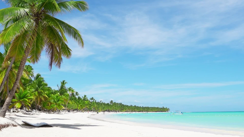 Summer sunny day on palm beach island Saona Dominican Republic. Blue Caribbean sea and beach, white sandy beach landscape Copy space. Sunny beach and sea and sky background. Holiday on paradise isle    Shutterstock HD Video #1047545386