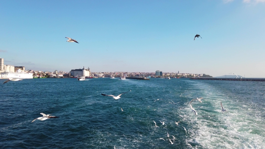 Seagulls flying behind the ferry crossing the Bosphorus Strait in Istanbul, Turkey | Shutterstock HD Video #1047674095